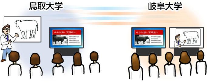 遠隔講義システムイメージ図